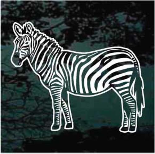Zebra 01