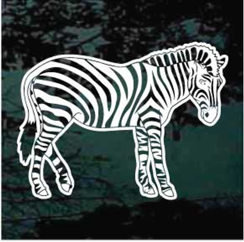 Zebra 04