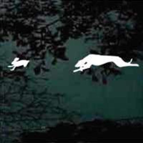 Dog & Jack Rabbit