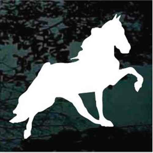 Prancing Tennessee Walker Horse