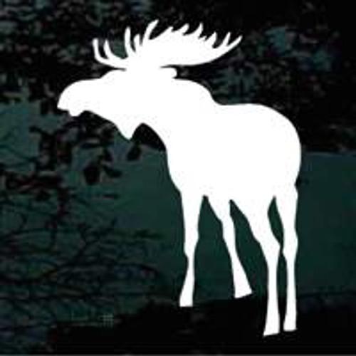 Moose (09)