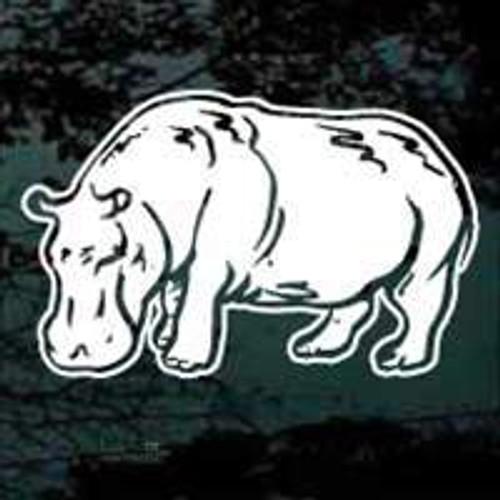 Hippopotamus 04