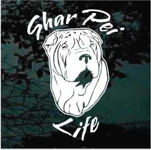 Shar Pei Life