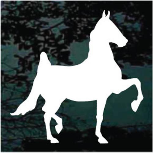 American Saddlebred 03