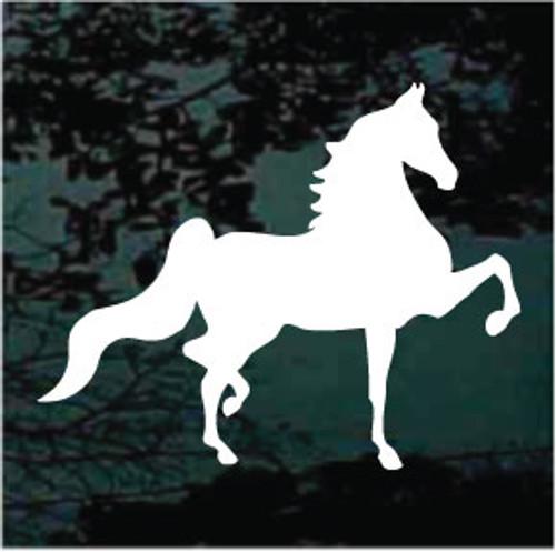 American Saddlebred 04