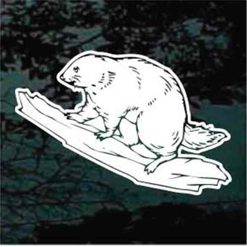 Beaver Sitting On A Log Decals