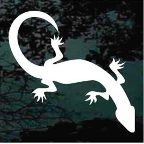 Solid Lizard