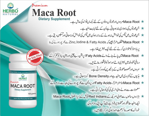 Herbo Natural Maca Root Powder  best price