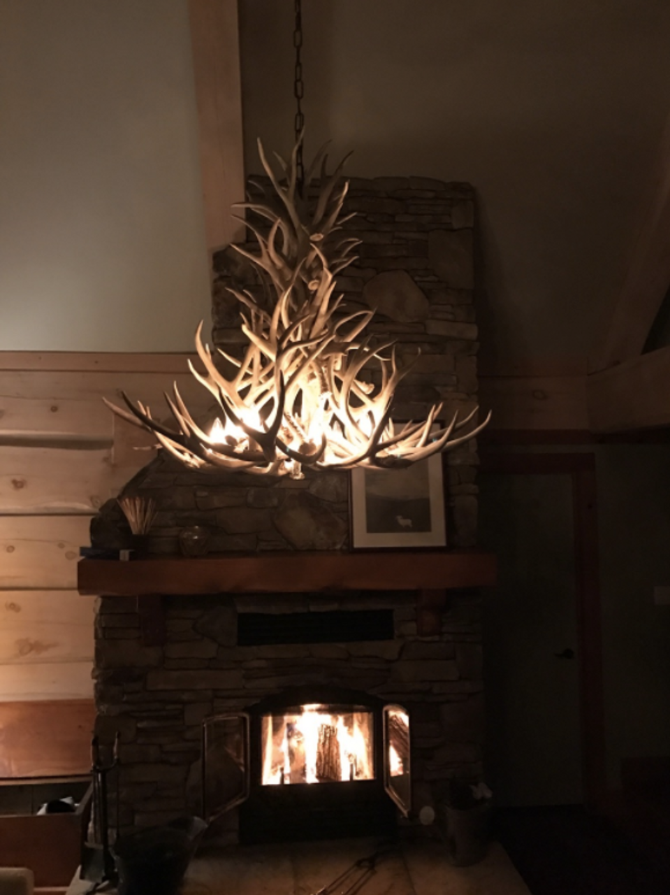 New mexico deer antler chandelier free shipping new mexico deer antler chandelier mozeypictures Choice Image