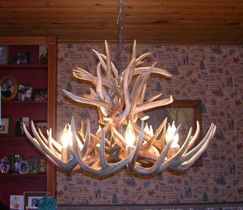 Maryland deer antler chandelier free shipping maryland deer antler chandelier 28 wide x 20 tall 6 lights mozeypictures Gallery