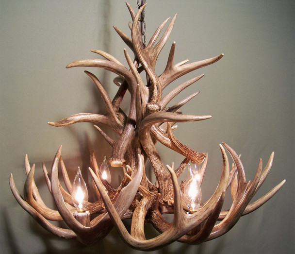 "Iowa Deer Antler Chandelier, 24"" W x 20"" T, 4 Lights"