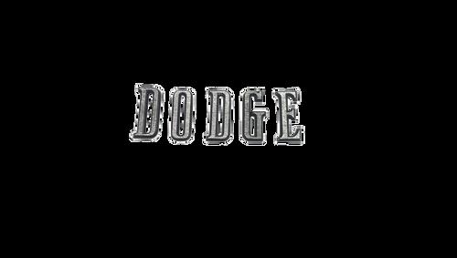 216-LD Mopar 1970 Dodge Challenger Taillight Letters