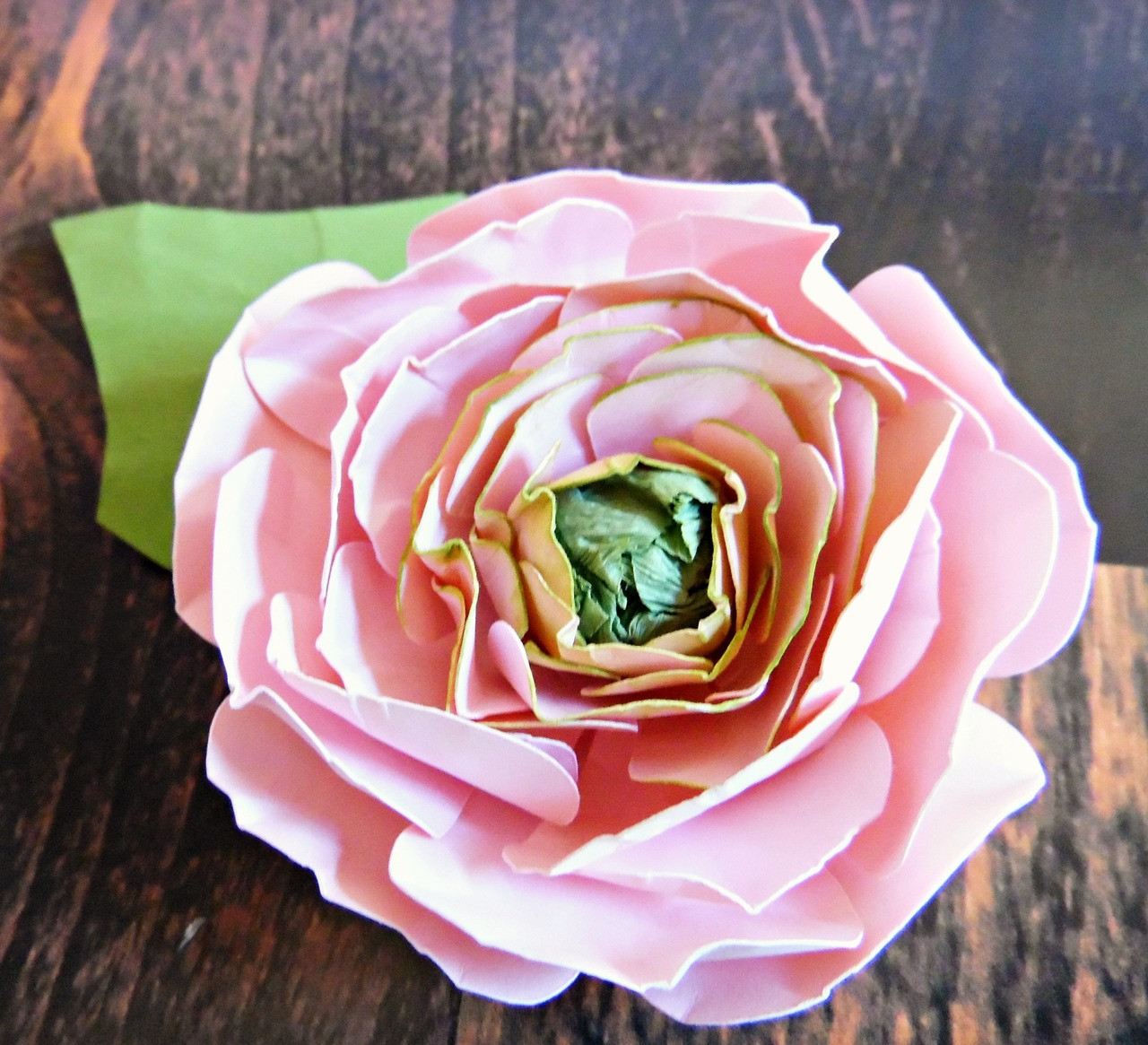 Ranunculus paper flower templates catching colorlfies mightylinksfo