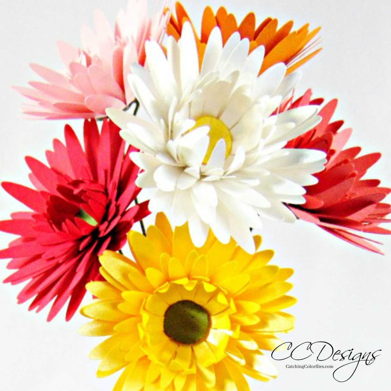 Small Gerbera Daisy Paper Flower Template Catching Colorlfies