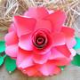Scarlet style rose.