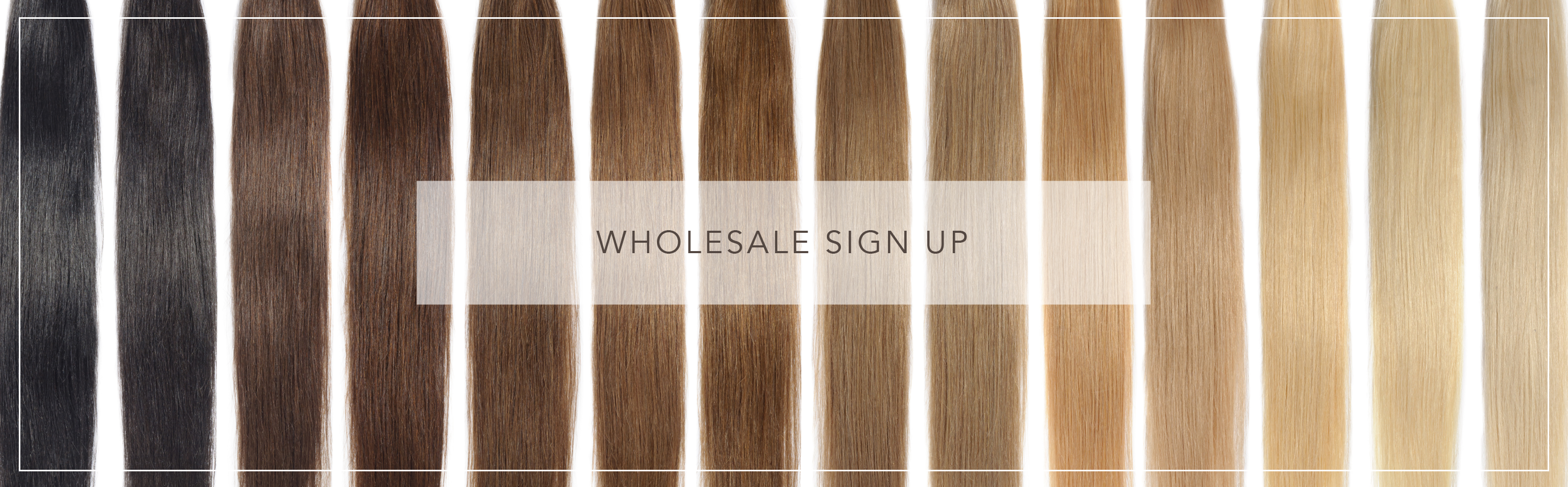 wholesale-sign-up-2.png