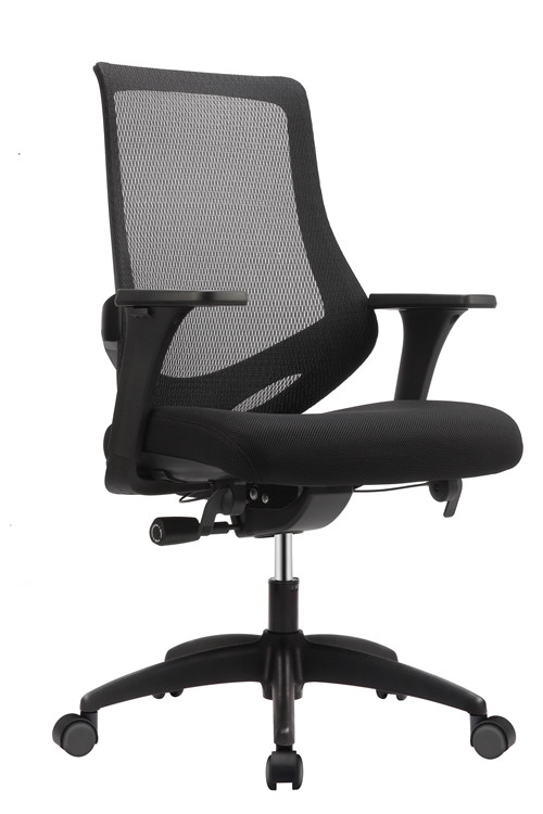 Eurotech Astra Task Chair in Black