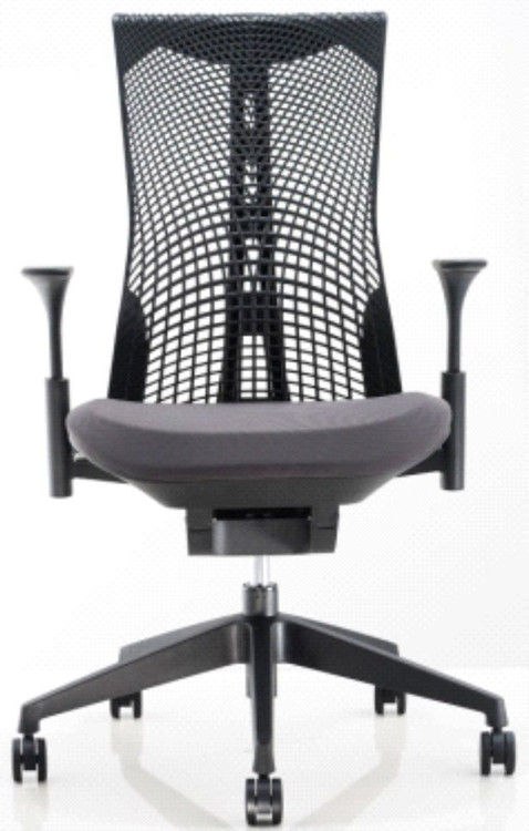 Lemoderno Emsteright Office Chair Flex Back