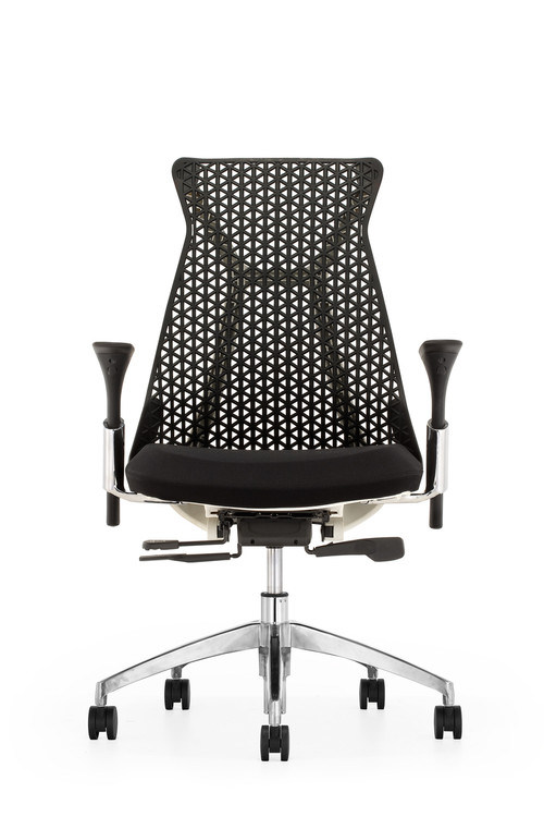 Lemoderno Santer Office Chair Flex Back Polished Base
