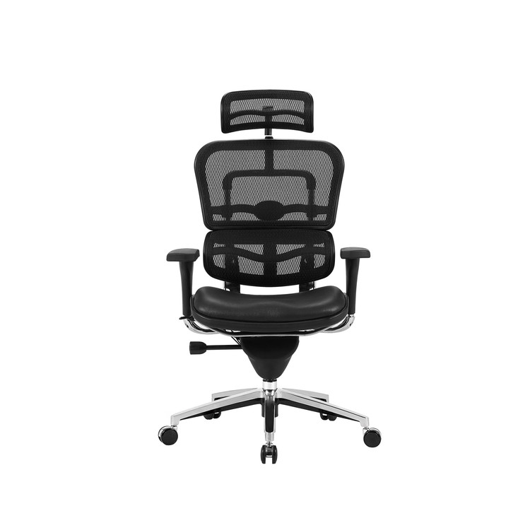 Lemoderno Ergospine Task Chair in Black Mesh Seat and Leather Seat