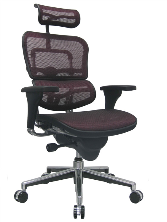 Eurotech Ergohuman High Back Office Chair in Red Mesh