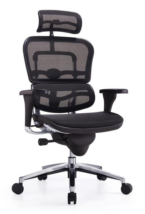 Lemoderno Ergospine Task Chair in Black