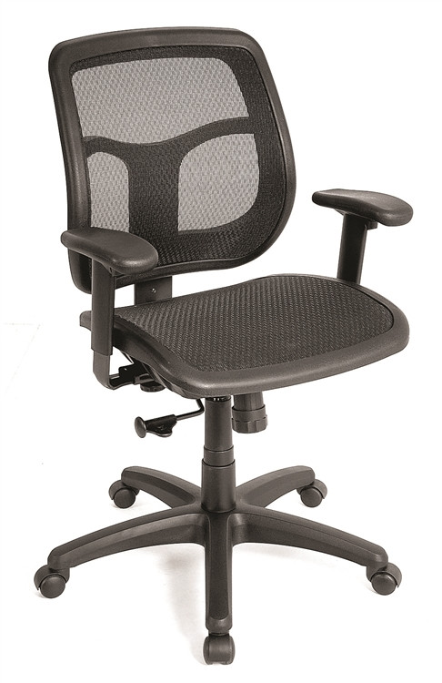 Eurotech Apollo Mesh Seat and Back Task Chair in Black