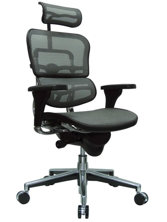 Eurotech Ergohuman High Back Office Chair in Gray Mesh