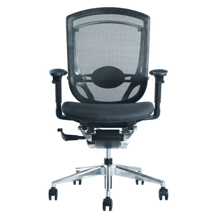 Fine Mod Ergo Fit Highly Adjustable Mesh Office Chair, Black