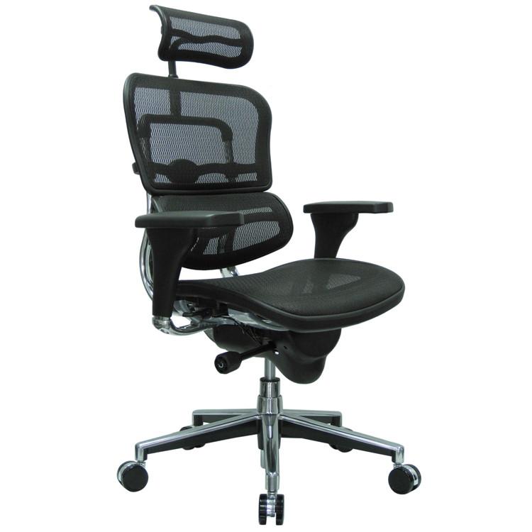 Eurotech Ergohuman High Back Office Chair in Black Mesh
