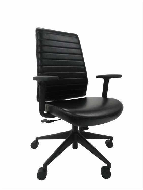 Eurotech Frasso Mid Back Adjustable Arm Office Chair in Black Leather
