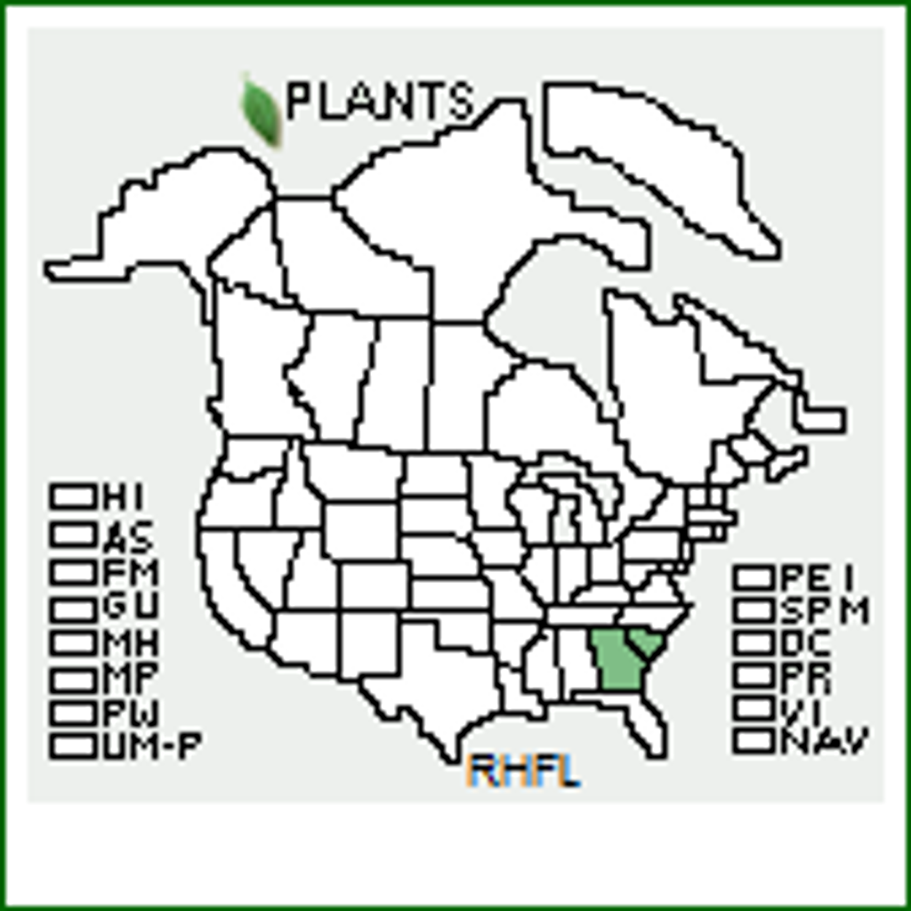 R.flammeum native range map