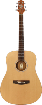 Ashton D20 Acoustic Guitar Natural