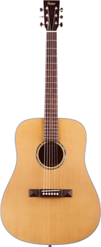 Tasman TA100 Seeker Series Dreadnought with Case