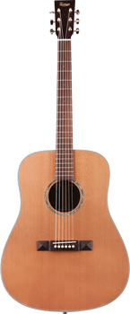 Tasman Captain TA200-E Dreadnought Acoustic/Electric with Case