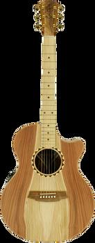 Cole Clark Angel 2 CCAN2EC-RDBLSB Redwood Blackwood