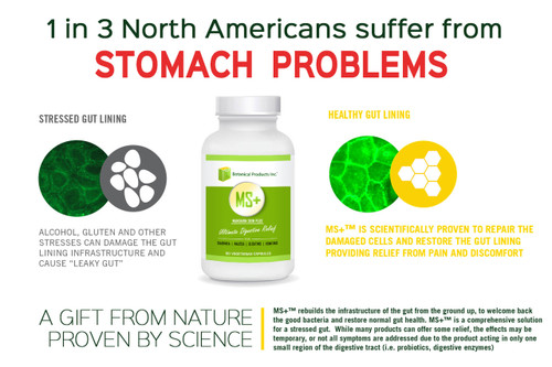 MS+ Ultimate Digestive Relief