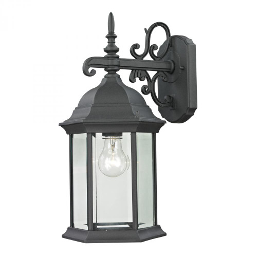 Elk Cornerstone Spring Lake 1 Light Exterior Coach Lantern In Ma 8X165 8601Ew/65