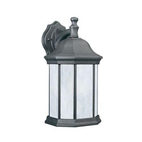 Thomas Hawthorne 14In 1 Light Fluorescent Die-Cast Aluminum Outdoor Wall Lantern In Black Finish With Etched Glass Pl94627