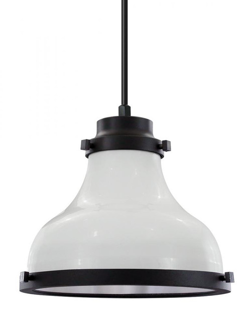 American Nail Plate 10 Inch Contemporary Madison Black Pendant Light-MA10-BLC-CL10-44-41