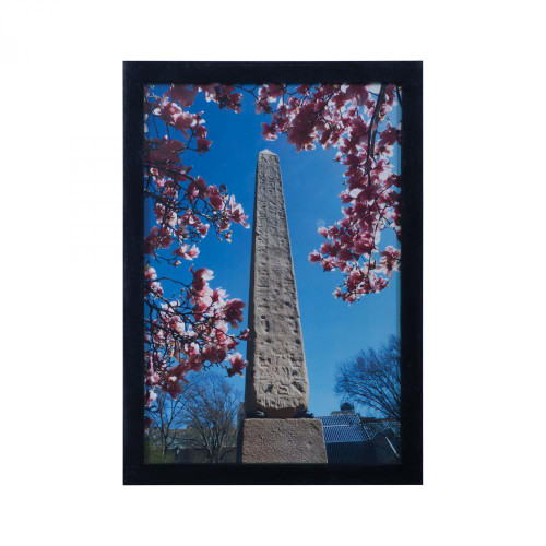 Dimond Wall Art-Central Park Obelisk 7011-1096