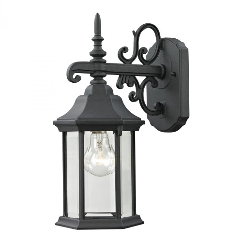 Elk Cornerstone Spring Lake 1 Light Exterior Coach Lantern In Ma 6X15 8611Ew/65