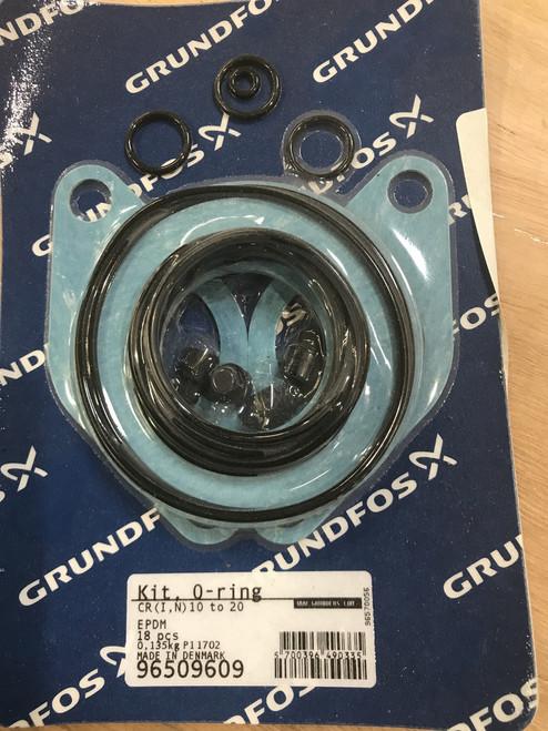 96509609, GRUNDFOS EPDM Gasket Kit