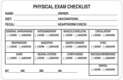 Physical Exam Checklist 4 Quot X2 5 8 Quot White Examination