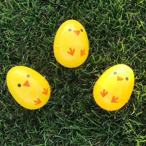 Chick Plastic Easter Eggs Outside