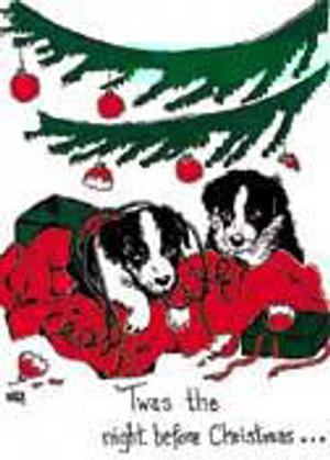 Night Before Christmas Christmas Card