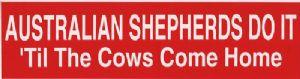 "Australian Shepherds Do It ""Til the Cows Come Home"