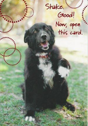 Shake, Good! - Birthday Card