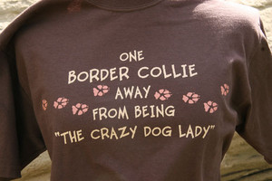 One Border Collie Away from Being the Crazy Dog Lady T-Shirt - Dark Chocolate