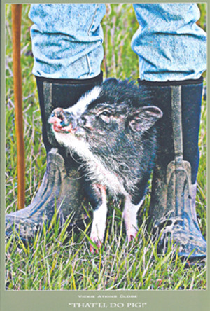 """""""That'll Do Pig"""" Note Card by Vickie Akins Close"""